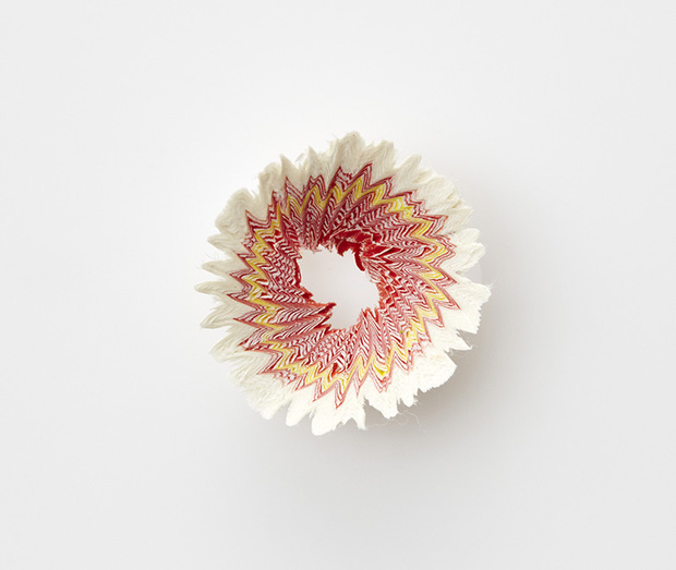 Ngắm vườn hoa xinh đẹp trổ bông từ vỏ gọt bút chì - Ảnh 6.