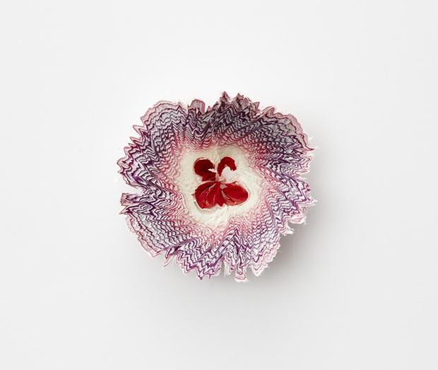 Ngắm vườn hoa xinh đẹp trổ bông từ vỏ gọt bút chì - Ảnh 8.