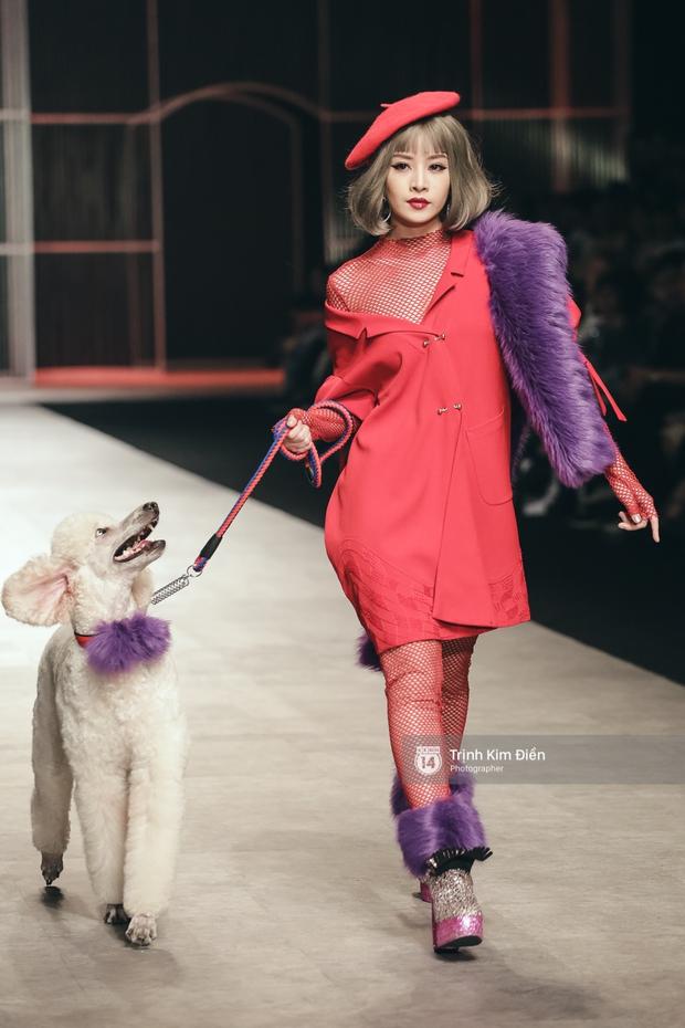 Chi Pu kiêu kì dắt cún trình diễn thời trang trên sàn diễn VIFW - Ảnh 4.