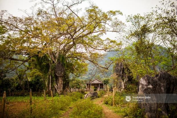 Ngôi làng mà King Kong đã quậy ở Quảng Bình có gì hay? - Ảnh 6.