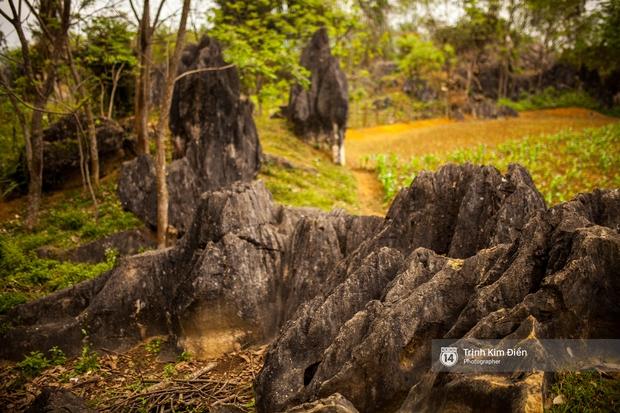 Ngôi làng mà King Kong đã quậy ở Quảng Bình có gì hay? - Ảnh 10.