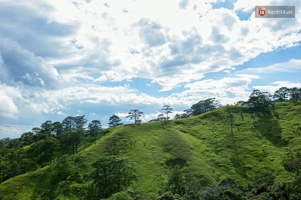 Trekking và cắm trại ở đồi Tà Năng: Đi để thấy mình còn trẻ và còn nhiều nơi phải chinh phục! - Ảnh 8.