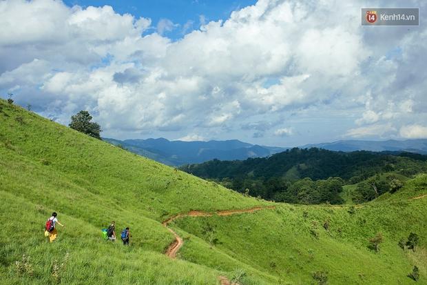 Trekking và cắm trại ở đồi Tà Năng: Đi để thấy mình còn trẻ và còn nhiều nơi phải chinh phục! - Ảnh 11.