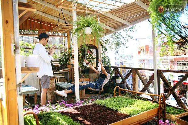 Những điều thú vị ở An - Quán cafe nằm giữa 5 cây mai anh đào cổ thụ tại Đà Lạt - Ảnh 16.