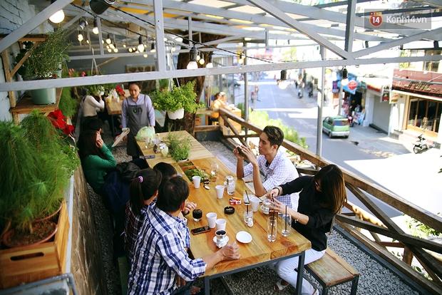 Những điều thú vị ở An - Quán cafe nằm giữa 5 cây mai anh đào cổ thụ tại Đà Lạt - Ảnh 17.
