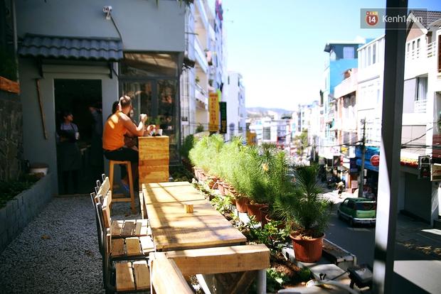 Những điều thú vị ở An - Quán cafe nằm giữa 5 cây mai anh đào cổ thụ tại Đà Lạt - Ảnh 20.