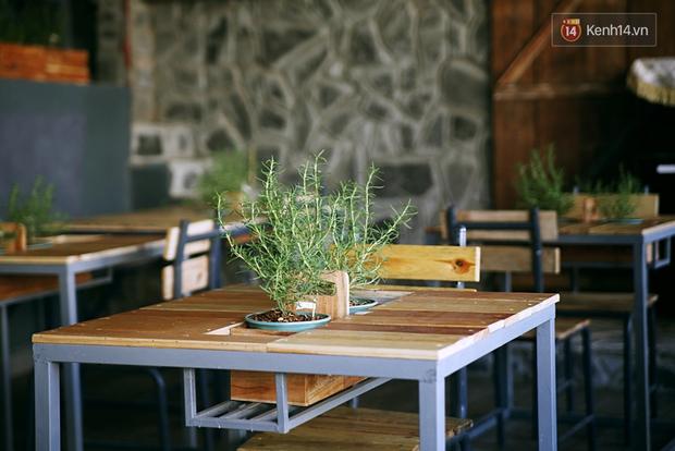 Những điều thú vị ở An - Quán cafe nằm giữa 5 cây mai anh đào cổ thụ tại Đà Lạt - Ảnh 7.