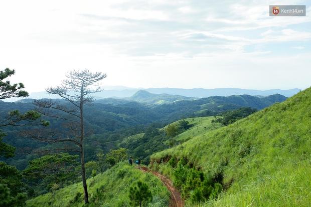 Trekking và cắm trại ở đồi Tà Năng: Đi để thấy mình còn trẻ và còn nhiều nơi phải chinh phục! - Ảnh 16.