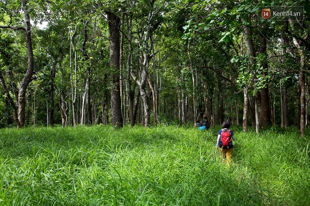 Trekking và cắm trại ở đồi Tà Năng: Đi để thấy mình còn trẻ và còn nhiều nơi phải chinh phục! - Ảnh 20.