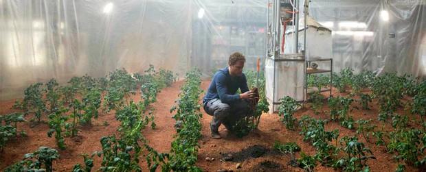 Tiết lộ các loại rau củ quả sẽ được trồng trên sao Hỏa - Ảnh 1.