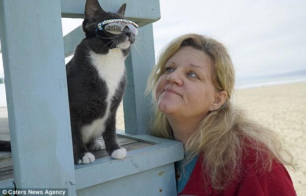 Bé mèo trở thành ngôi sao bất đắc dĩ nhờ căn bệnh bẩm sinh - Ảnh 12.