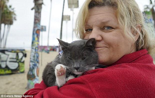 Bé mèo trở thành ngôi sao bất đắc dĩ nhờ căn bệnh bẩm sinh - Ảnh 7.