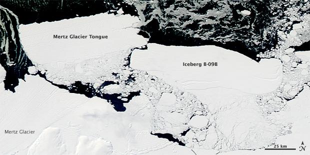 150.000 con chim cánh cụt đã ra đi vì một tảng băng trôi to như thành Rome - Ảnh 2.