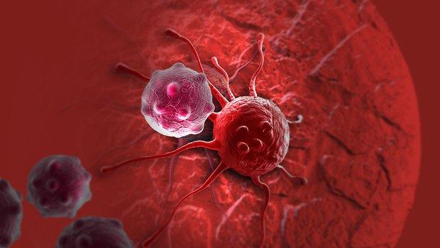 Tìm ra bằng chứng cho thấy ăn nhiều mỡ có thể thúc đẩy ung thư - Ảnh 2.