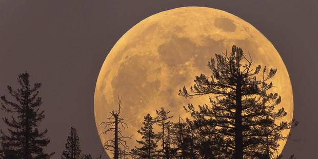 Siêu trăng lớn nhất thế kỷ sẽ xuất hiện vào ngày 14/11, và Việt Nam xem được nhé! - Ảnh 1.