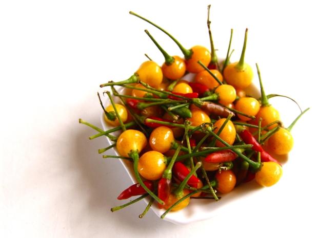 Loại ớt nhà giàu có giá hơn nửa tỷ đồng, chưa ăn cũng thấy sang miệng - Ảnh 1.