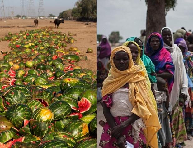 Trong khi bao người nghèo đang chết đói, người ta vẫn vô tư vứt đồ ăn đầy lãng phí - Ảnh 1.