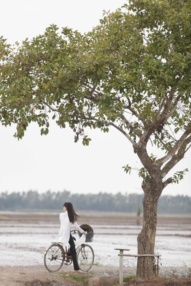Nức lòng với cảnh đẹp trong phim điện ảnh Việt - Ảnh 22.
