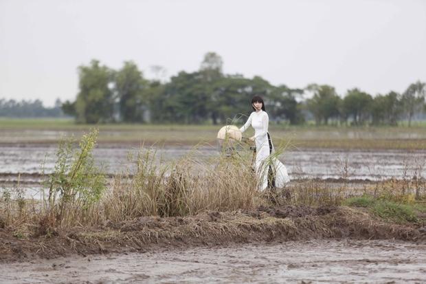 Nức lòng với cảnh đẹp trong phim điện ảnh Việt - Ảnh 23.