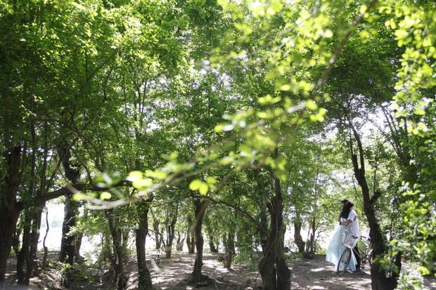 Nức lòng với cảnh đẹp trong phim điện ảnh Việt - Ảnh 24.