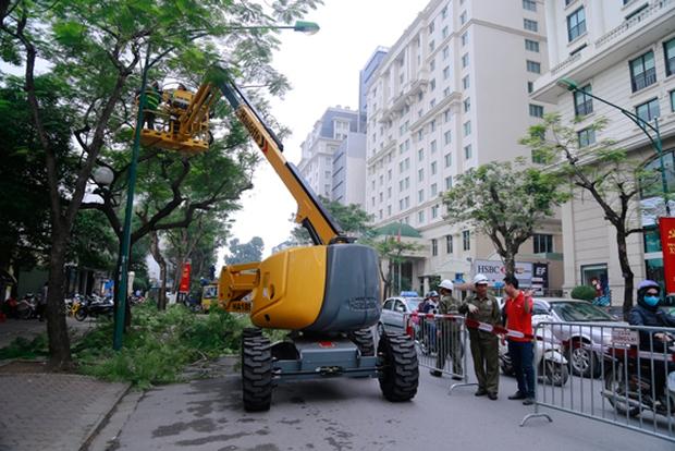 Hà Nội chi hàng tỷ đồng mua xe chuyên dụng cắt tỉa cây xanh - Ảnh 1.