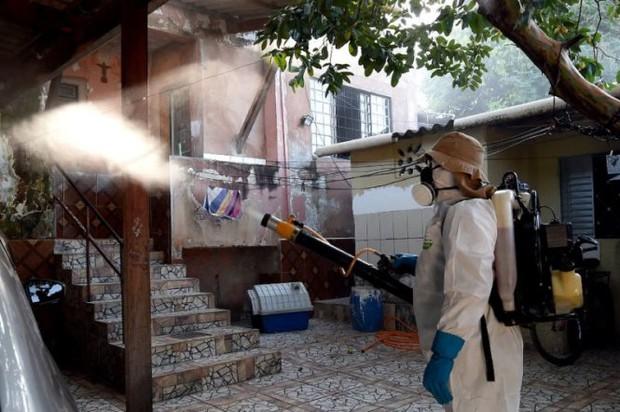Brazil ghi nhận 91.000 ca nhiễm mới virút Zika - Ảnh 1.