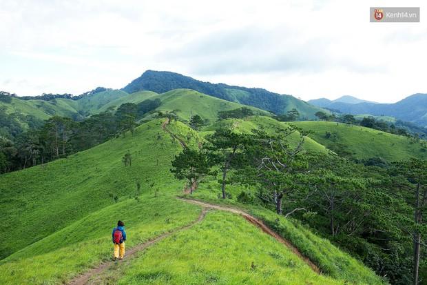 Trekking và cắm trại ở đồi Tà Năng: Đi để thấy mình còn trẻ và còn nhiều nơi phải chinh phục! - Ảnh 1.