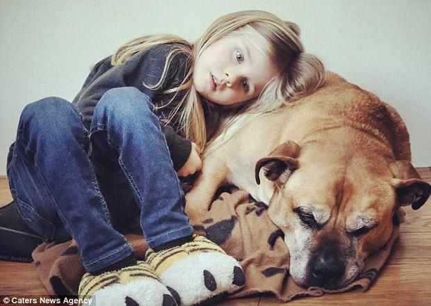 Giây phút vĩnh biệt đầy xúc động của cô bé 6 tuổi với chú chó mù và điếc - Ảnh 1.