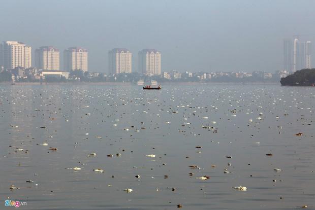 Những xác cá nặng hàng cân nổi lềnh bềnh - cảnh tượng đầy ám ảnh ở hồ Tây ngày hôm nay! - Ảnh 13.