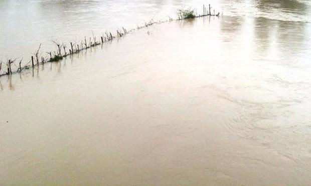 Rơi xuống ruộng ngập nước, nam sinh lớp 8 chết đuối thương tâm - Ảnh 1.