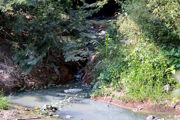 Hà Nội: Lềnh bềnh rau muống trên dòng sông đỏ quạch - Ảnh 11.