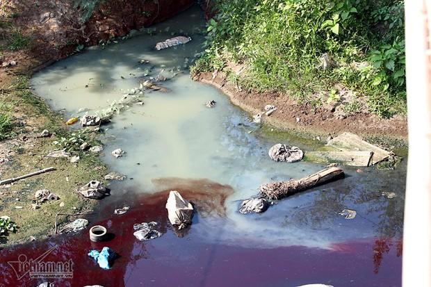 Hà Nội: Lềnh bềnh rau muống trên dòng sông đỏ quạch - Ảnh 12.