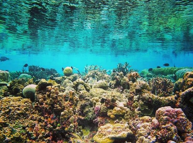 Tất tật những điều cần biết để khám phá Vĩnh Hy - 1 trong 4 vịnh đẹp nhất Việt Nam - Ảnh 13.