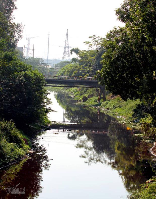 Hà Nội: Lềnh bềnh rau muống trên dòng sông đỏ quạch - Ảnh 14.