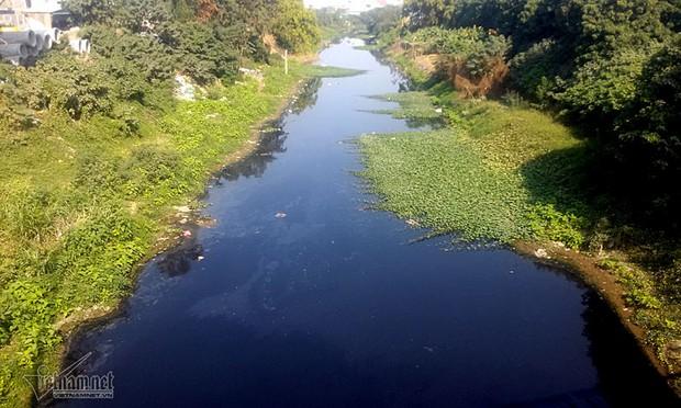 Hà Nội: Lềnh bềnh rau muống trên dòng sông đỏ quạch - Ảnh 15.