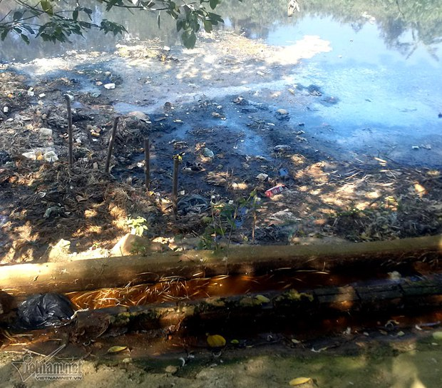 Hà Nội: Lềnh bềnh rau muống trên dòng sông đỏ quạch - Ảnh 16.