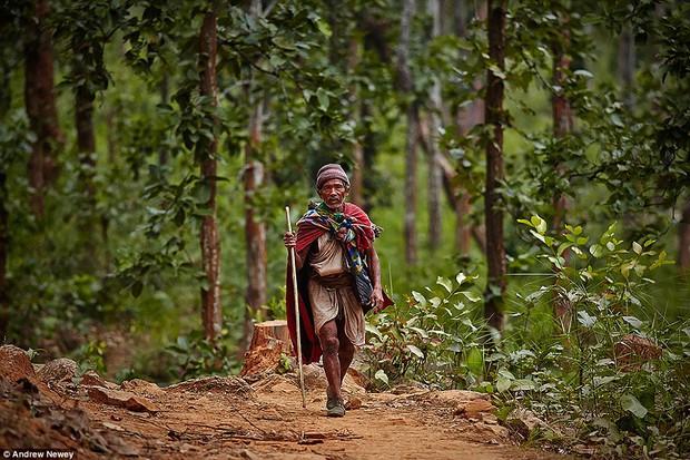 Có 1 bộ tộc nguyên thủy đang đứng bên bờ vực bị xóa sổ vĩnh viễn - Ảnh 2.