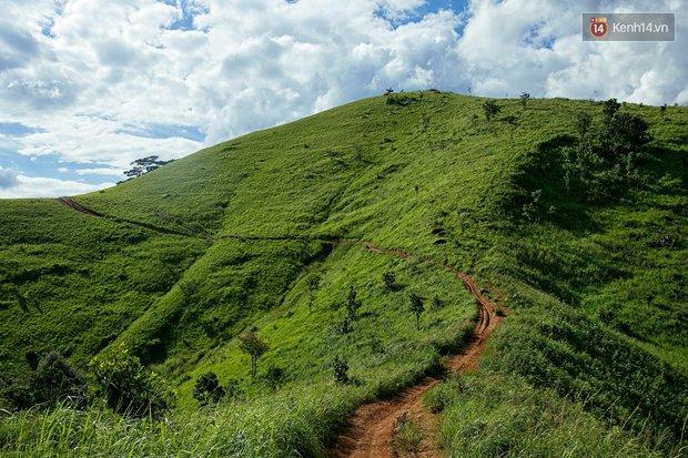 Trekking và cắm trại ở đồi Tà Năng: Đi để thấy mình còn trẻ và còn nhiều nơi phải chinh phục! - Ảnh 2.