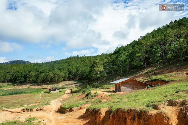 Trekking và cắm trại ở đồi Tà Năng: Đi để thấy mình còn trẻ và còn nhiều nơi phải chinh phục! - Ảnh 4.