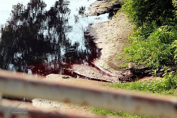 Hà Nội: Lềnh bềnh rau muống trên dòng sông đỏ quạch - Ảnh 5.