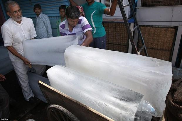 Chùm ảnh: Những hình ảnh nắng nóng khủng khiếp chỉ có ở Ấn Độ - Ảnh 21.
