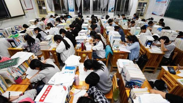 Trung Quốc: Cấm học sinh xé sách, la hét trước kì thi đại học - Ảnh 3.