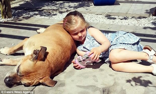 Giây phút vĩnh biệt đầy xúc động của cô bé 6 tuổi với chú chó mù và điếc - Ảnh 7.