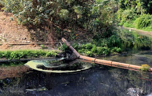Hà Nội: Lềnh bềnh rau muống trên dòng sông đỏ quạch - Ảnh 10.