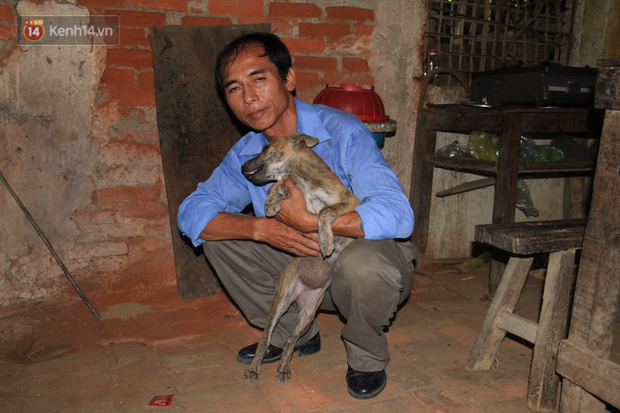 Cuộc sống hiện tại của thầy giáo nghèo Quảng Nam sau 19 ngày lặn lội Sài Gòn tìm chú chó Rex - Ảnh 8.
