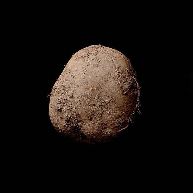Bức ảnh củ khoai tây này trị giá tới 1 triệu USD - Ảnh 1.