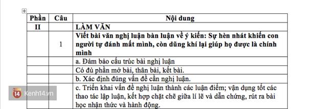 HOT: Gợi ý giải đề môn Ngữ văn THPT Quốc gia - Ảnh 4.