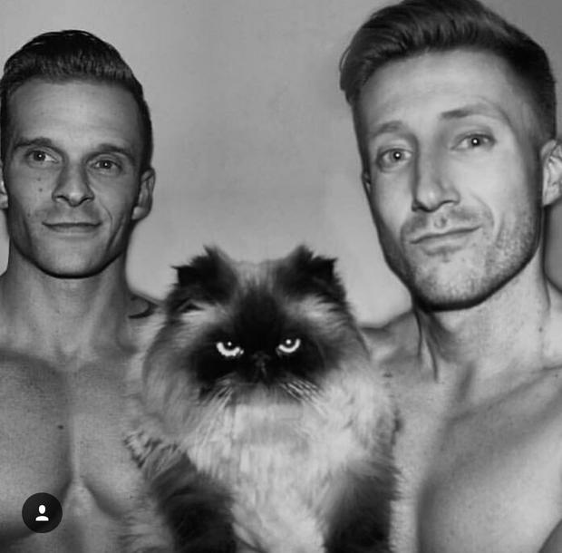 Trai đẹp và Mèo - Sự kết hợp đang làm náo loạn Instagram! - Ảnh 11.