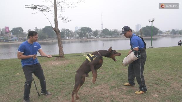 Bí kíp khống chế và thoát nạn an toàn khi bị chó dữ cắn - Ảnh 3.