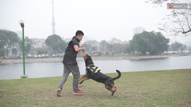 Bí kíp khống chế và thoát nạn an toàn khi bị chó dữ cắn - Ảnh 4.